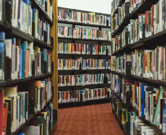 Biblioteka Tomaszów Maz.:  Pluszowy Miś