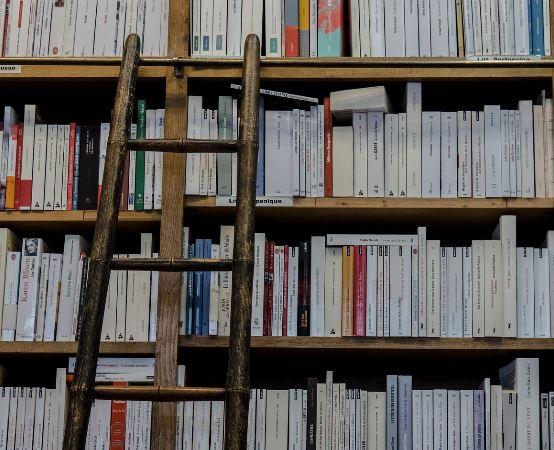 Biblioteka Tomaszów Maz.:  Z Książką na Walizkach - Co w trawie piszczy